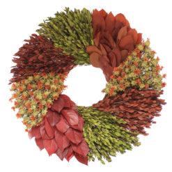 Autumn Foliage Collection